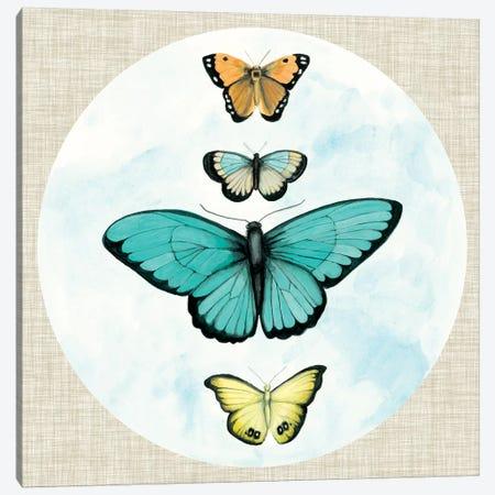 Butterfly Daydream I Canvas Print #NMC172} by Naomi McCavitt Canvas Wall Art