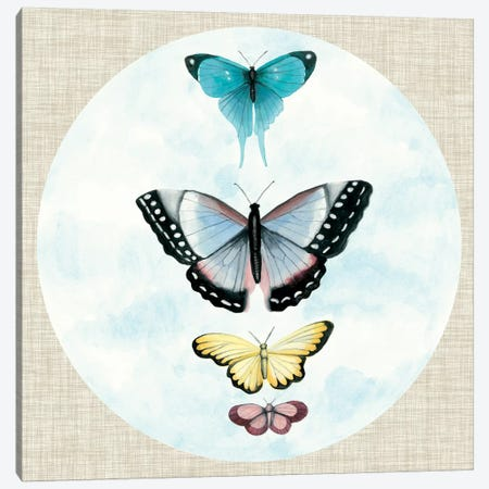 Butterfly Daydream II Canvas Print #NMC173} by Naomi McCavitt Canvas Art