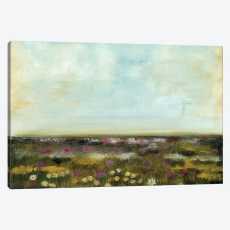 Floral Fields I 3-Piece Canvas #NMC176} by Naomi McCavitt Canvas Art Print