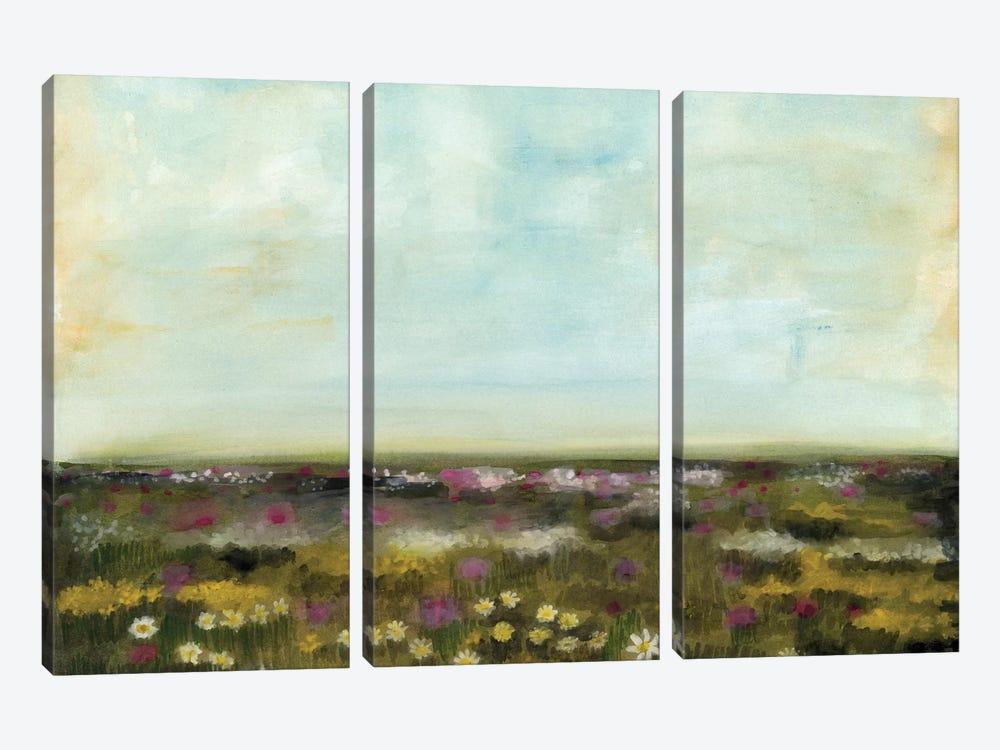 Floral Fields I by Naomi McCavitt 3-piece Canvas Artwork