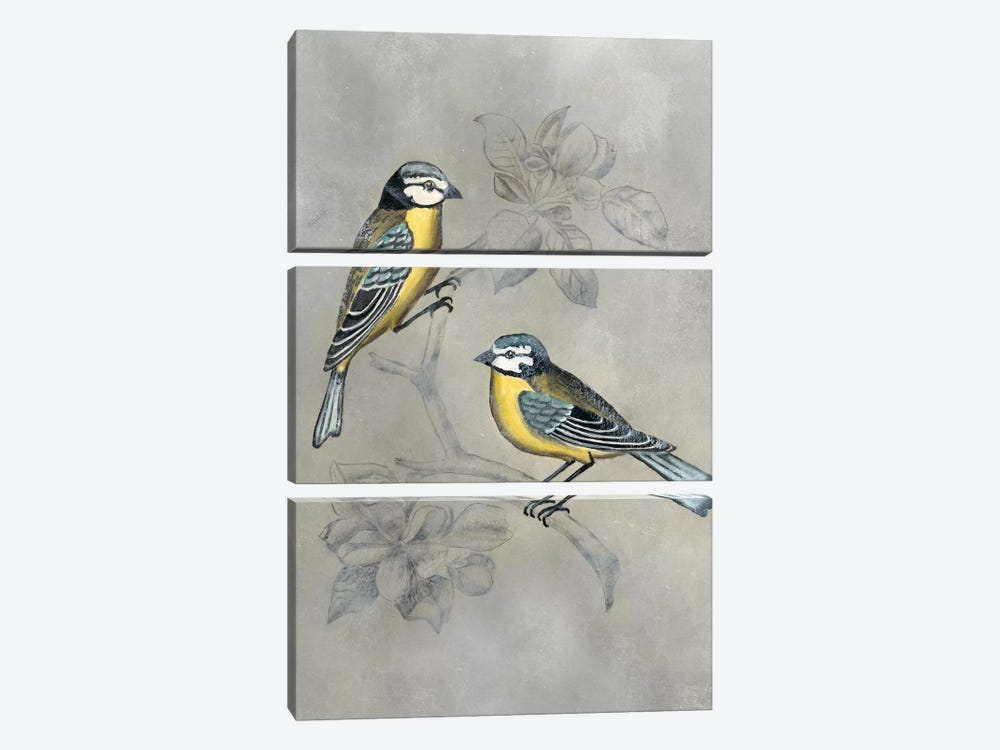Silvered Aviary I by Naomi McCavitt 3-piece Canvas Print
