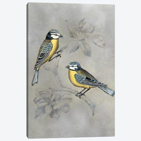 Silvered Aviary I Canvas Print #NMC180} by Naomi McCavitt Canvas Print