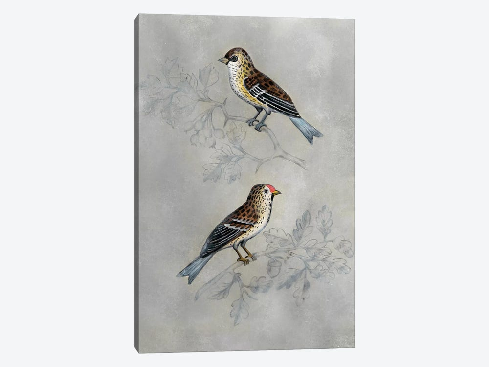 Silvered Aviary II 1-piece Canvas Wall Art