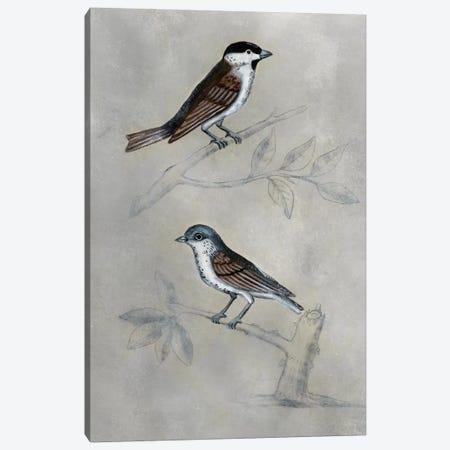 Silvered Aviary III Canvas Print #NMC182} by Naomi McCavitt Canvas Art Print
