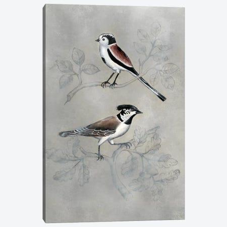 Silvered Aviary IV Canvas Print #NMC183} by Naomi McCavitt Canvas Art Print