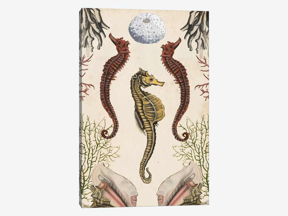 Antiquarian Menagerie: Seahorse by Naomi McCavitt 1-piece Art Print