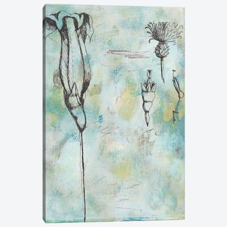 Botanical Abstract II Canvas Print #NMC192} by Naomi McCavitt Canvas Art