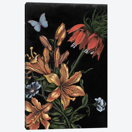 Dark Floral II Canvas Print #NMC196} by Naomi McCavitt Art Print