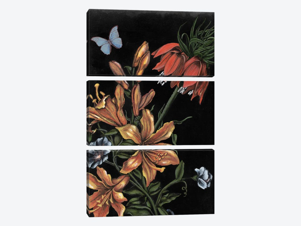 Dark Floral II by Naomi McCavitt 3-piece Canvas Artwork