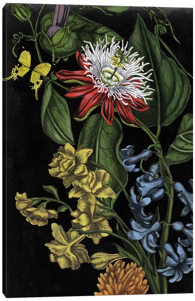 Dark Floral III Canvas Art Print