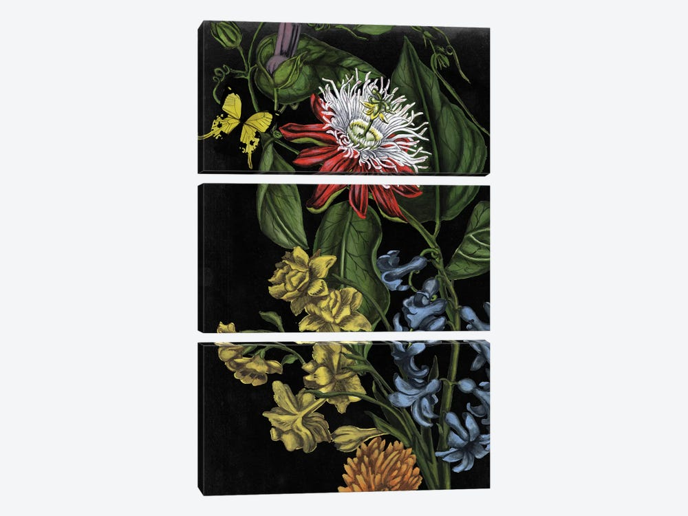 Dark Floral III by Naomi McCavitt 3-piece Canvas Print