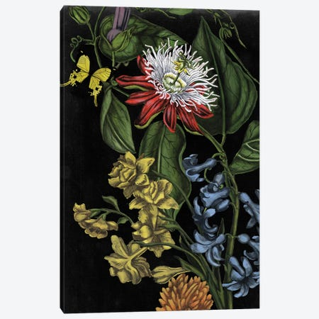 Dark Floral III 3-Piece Canvas #NMC197} by Naomi McCavitt Canvas Print