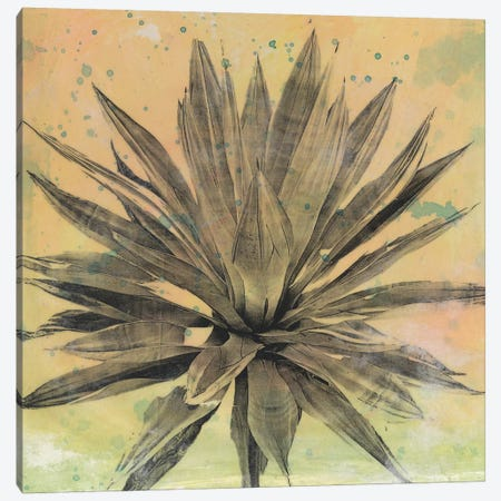 Desert Dreams I Canvas Print #NMC199} by Naomi McCavitt Canvas Artwork