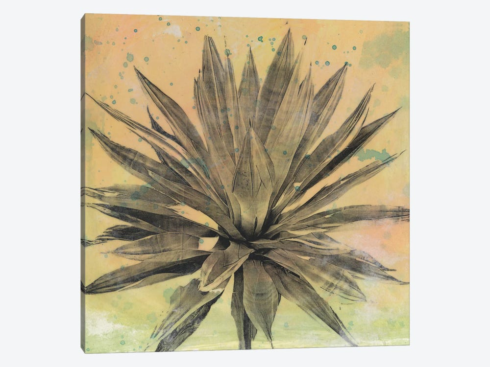 Desert Dreams I by Naomi McCavitt 1-piece Canvas Print