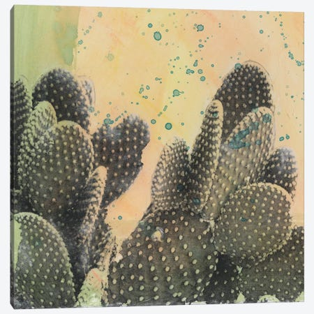 Desert Dreams II Canvas Print #NMC200} by Naomi McCavitt Canvas Artwork