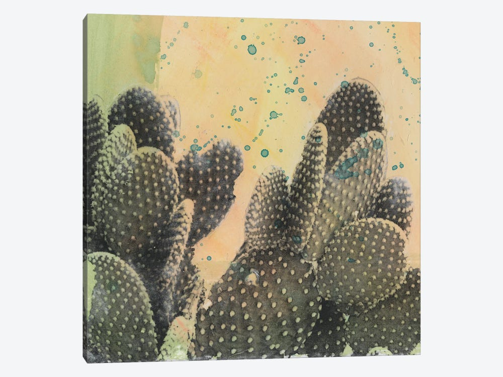 Desert Dreams II by Naomi McCavitt 1-piece Canvas Print
