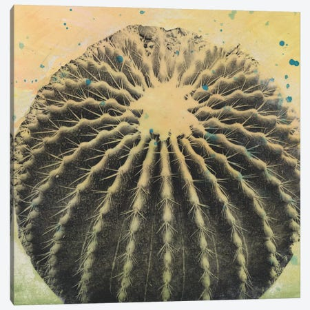 Desert Dreams III Canvas Print #NMC201} by Naomi McCavitt Canvas Artwork