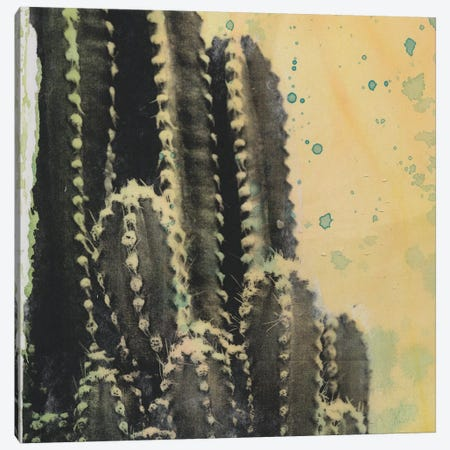 Desert Dreams IV Canvas Print #NMC202} by Naomi McCavitt Canvas Art