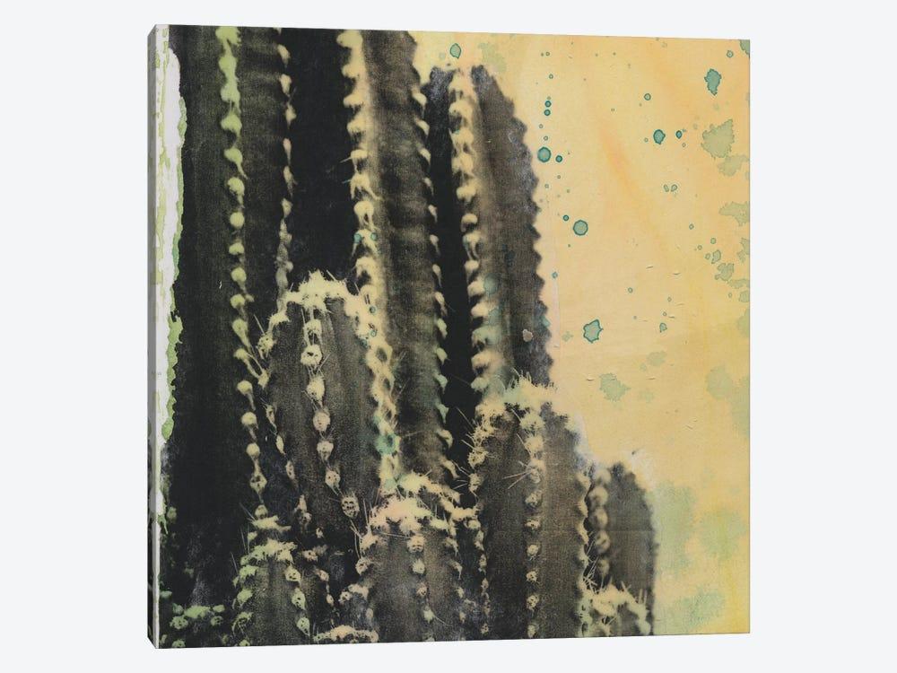 Desert Dreams IV by Naomi McCavitt 1-piece Art Print