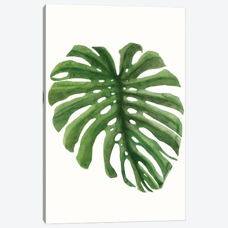 Tropical Breeze Leaves I Canvas Print #NMC207} by Naomi McCavitt Art Print