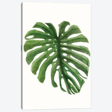 Tropical Breeze Leaves I Canvas Print #NMC207} by Naomi McCavitt Art Print