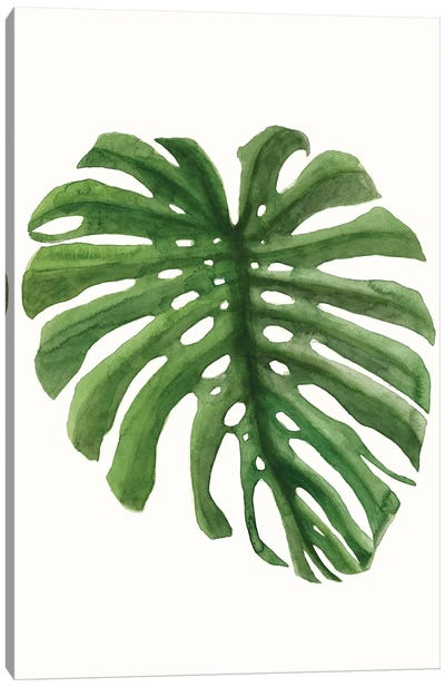 Tropical Breeze Leaves I Canvas Art Print