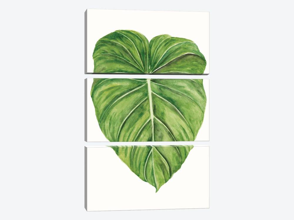 Tropical Breeze Leaves II by Naomi McCavitt 3-piece Canvas Art Print