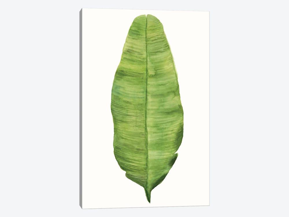 Tropical Breeze Leaves IV by Naomi McCavitt 1-piece Canvas Art
