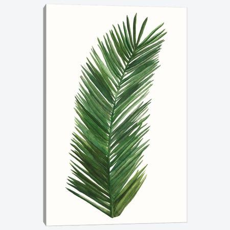Tropical Breeze Leaves V Canvas Print #NMC210} by Naomi McCavitt Canvas Art Print