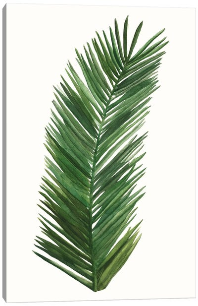 Tropical Breeze Leaves V Canvas Art Print