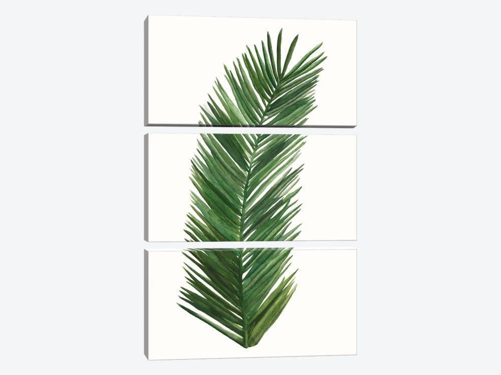 Tropical Breeze Leaves V by Naomi McCavitt 3-piece Canvas Art