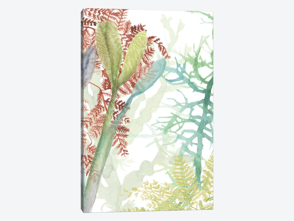 Woven Sea Plants II by Naomi McCavitt 1-piece Canvas Artwork