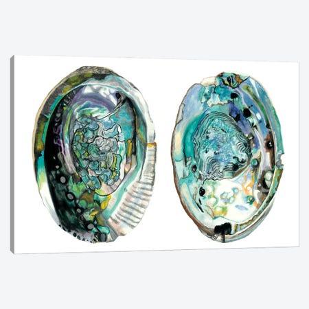 Abalone Shells I Canvas Print #NMC215} by Naomi McCavitt Canvas Art