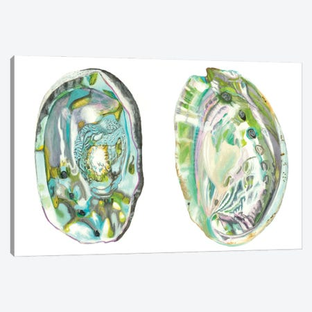 Abalone Shells II Canvas Print #NMC216} by Naomi McCavitt Canvas Wall Art