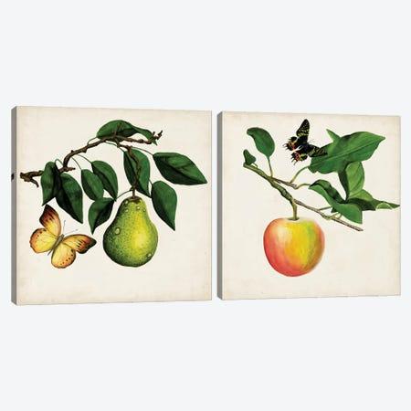 Fruit With Butterflies Diptych Canvas Print Set #NMC2HSET002} by Naomi McCavitt Canvas Artwork