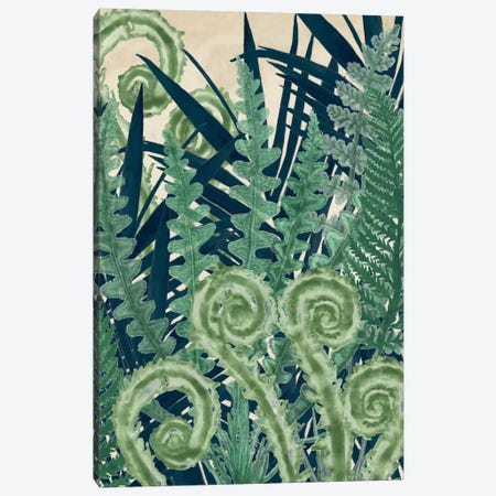 Fiddlehead Waltz II Canvas Print #NMC31} by Naomi McCavitt Canvas Art Print