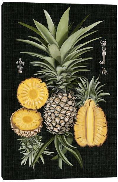 Graphic Pineapple Botanical Study I Canvas Print #NMC32