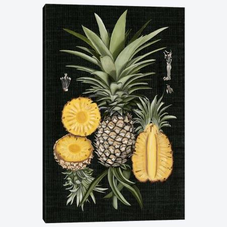 Graphic Pineapple Botanical Study I Canvas Print #NMC32} by Naomi McCavitt Canvas Print