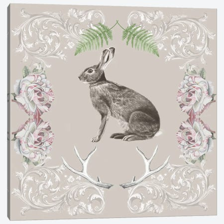 Hare & Antlers I Canvas Print #NMC34} by Naomi McCavitt Canvas Art