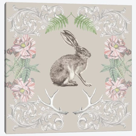 Hare & Antlers II Canvas Print #NMC35} by Naomi McCavitt Canvas Wall Art