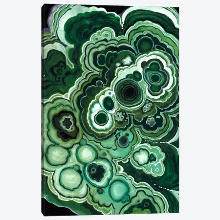 Malachite I Canvas Print #NMC36} by Naomi McCavitt Canvas Art
