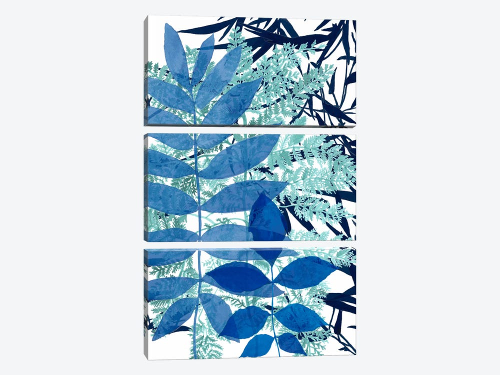 Morning Dew II by Naomi McCavitt 3-piece Canvas Artwork