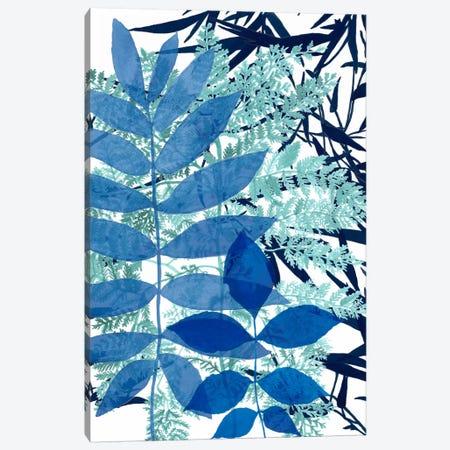 Morning Dew II Canvas Print #NMC39} by Naomi McCavitt Art Print