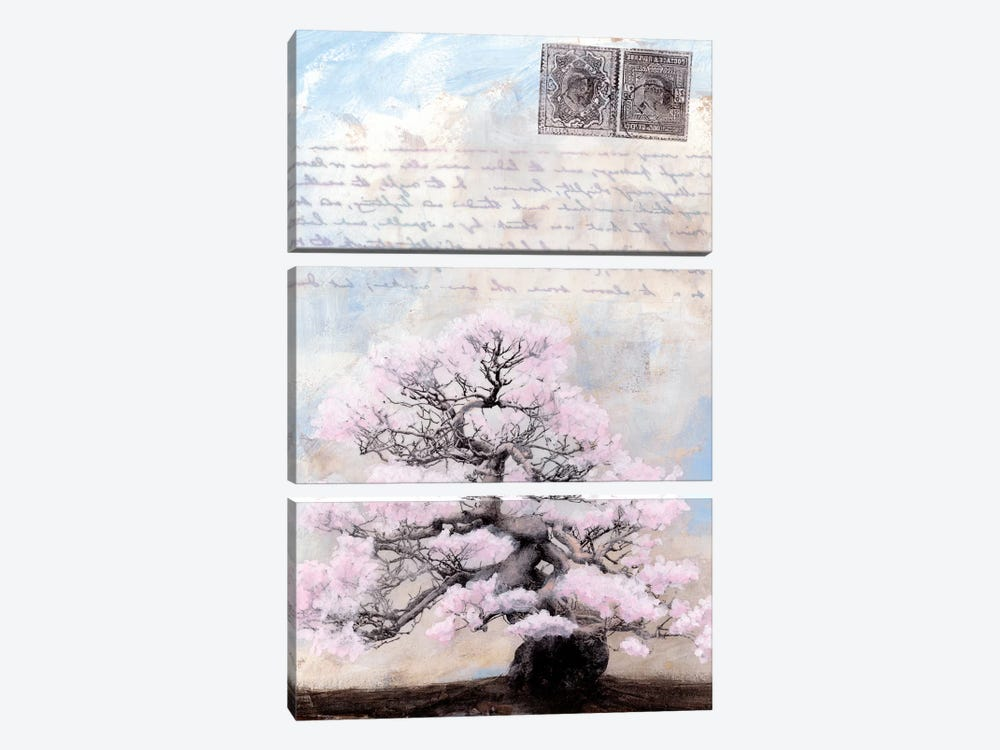 Springtime Memories II by Naomi McCavitt 3-piece Canvas Artwork