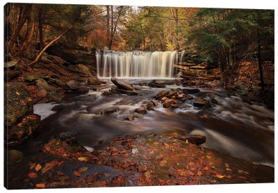 Rushing Water Canvas Art Print