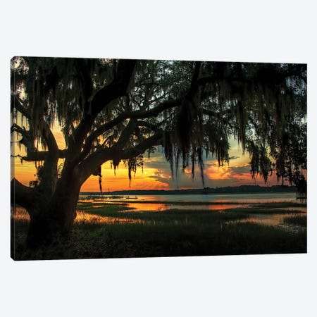 Savannah Evening 3-Piece Canvas #NMI11} by Natalie Mikaels Canvas Print