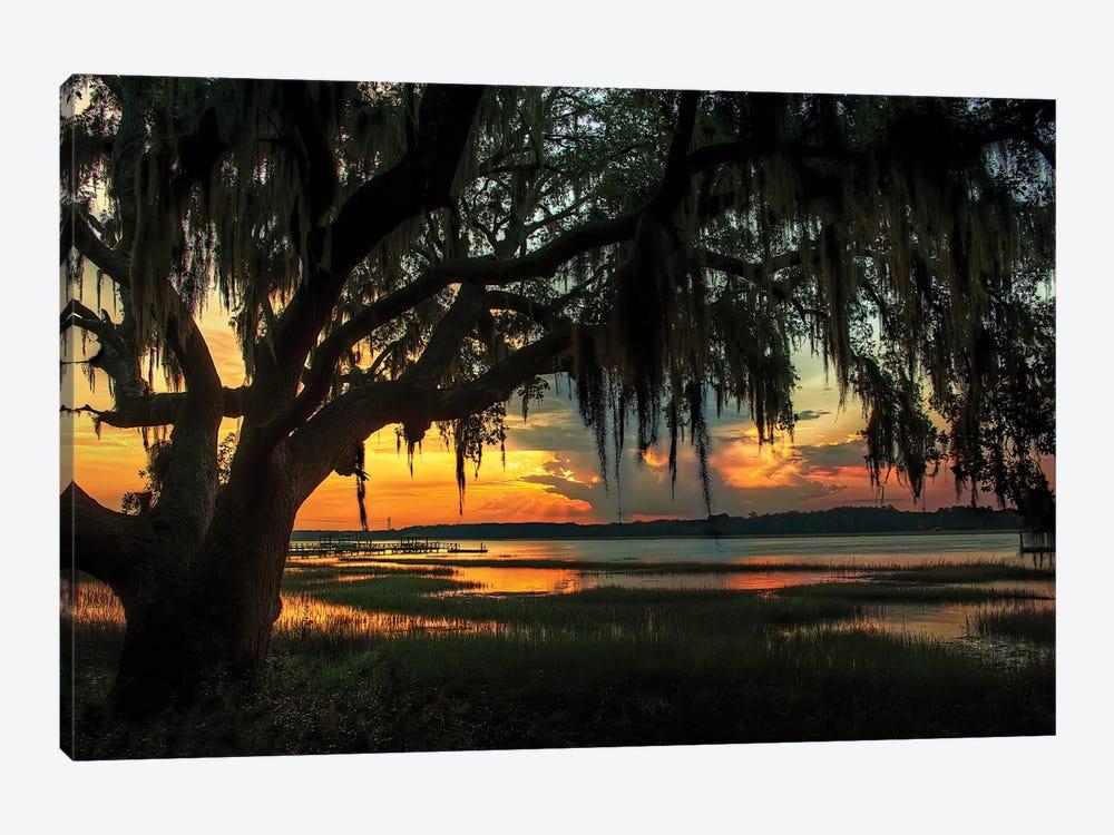 Savannah Evening by Natalie Mikaels 1-piece Canvas Artwork