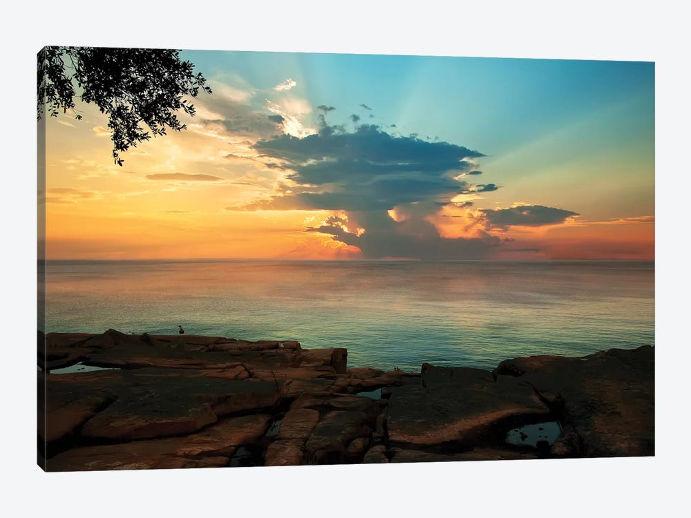 Tranquil Overlook by Natalie Mikaels 1-piece Art Print
