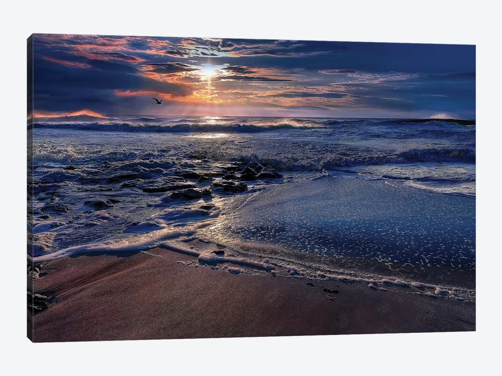 Deep Blue by Natalie Mikaels 1-piece Canvas Wall Art