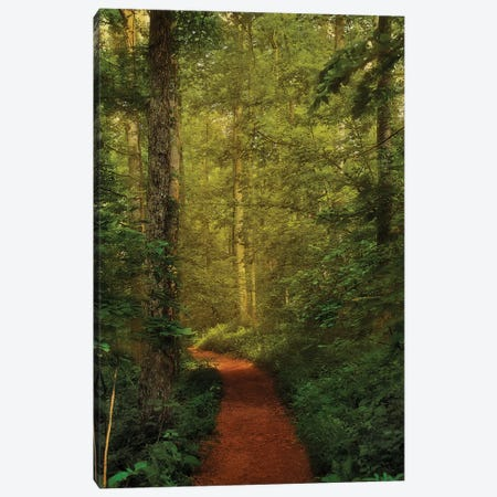 Fairytale Path Canvas Print #NMI6} by Natalie Mikaels Canvas Art Print